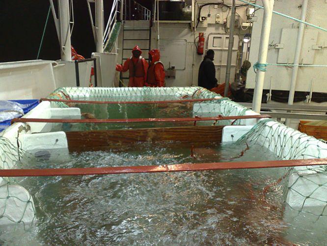 Boats ships for sale fishing long line deep sea vessel for Commercial deep sea fishing boats for sale